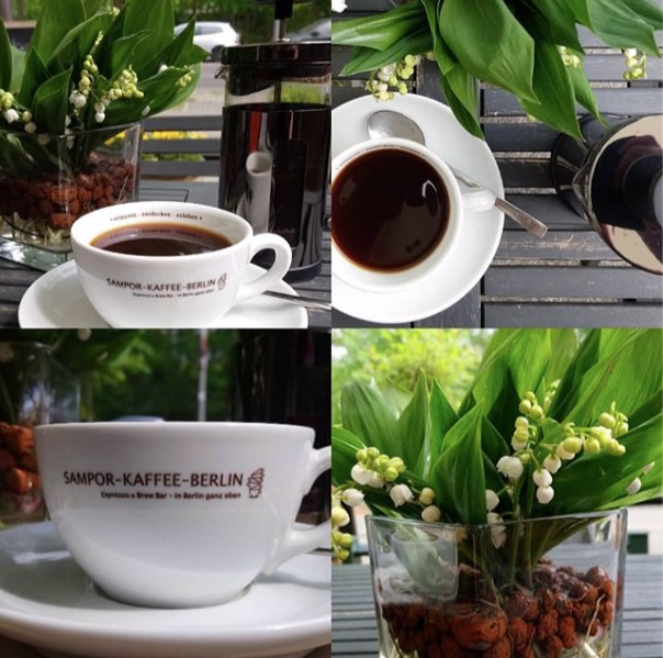 mai_samopor_blumen_kaffee_gruen_cafe_tegel_raz